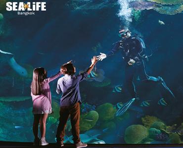 25% off on SEA LIFE Bangkok Ocean World