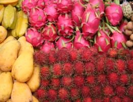 Discover Thailand Fruit Farms